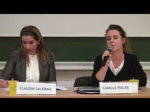 Debriefing After The COP21 In Paris - Brussels