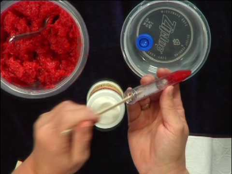 Virginia Farm Bureau - ABCs of Agriculture - Strawberry DNA