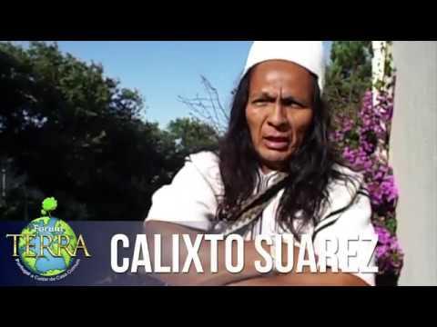 Calixto Suarez