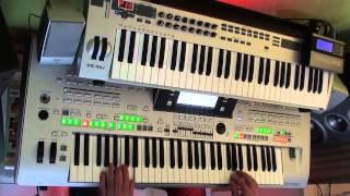 euphoria - loreen remix on tyros 3