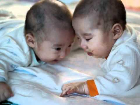 Funny 5 Month Old Korean Twins Cute Baby Fight Laughing