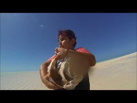 West Island Ashmore reef 2017