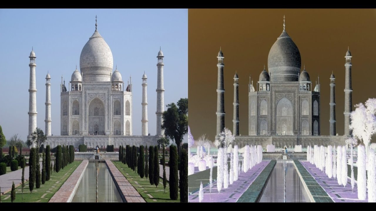 How to convert a color image into negative - Image Processing
