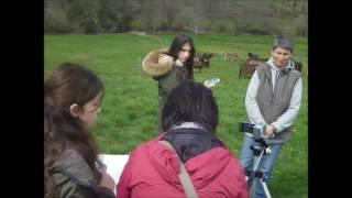 Asinerie du Périgord : les coulisses du tournage