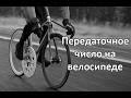 Передаточное число на велосипеде (соотношение звезд на Bmx и Singlespeed)