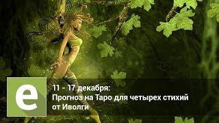 С 11 декабря по  17 декабря - Таро гороскоп для четырех стихий от Иволги