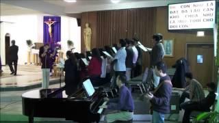 Hạt mưa thánh ân  - Thế Thông