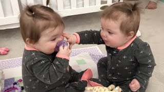 Funniest TWIN Baby Girls Share A Pacifier thumbnail