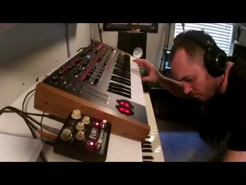 DSI Pro2 and Strymon Flint - Synth and Pedal demonstration