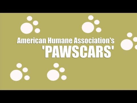 The Pawscars
