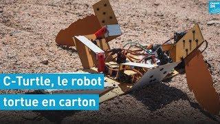 C-Turtle, le robot tortue en carton qui doit un jour explorer Mars