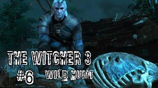 Ведьмак 3: Дикая Охота Прохождение #6 Лихо у колодца