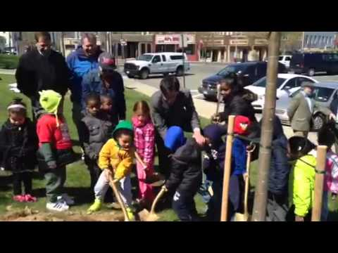 New Rochelle Mayor Noam Bramson plants trees outside of City Hall.