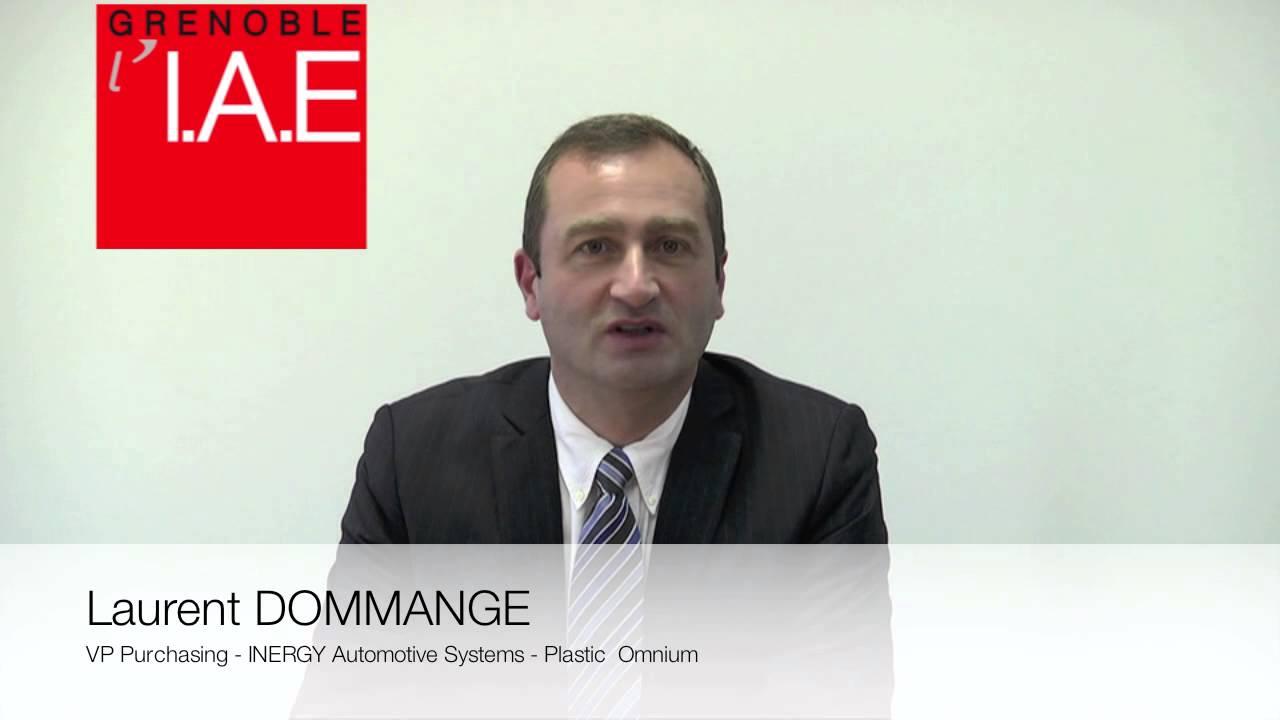 L dommange vp purchasing plastic omnium inergy automotive for Plastic omnium auto exterieur ruitz
