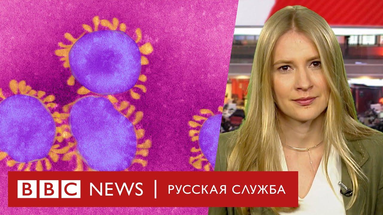 Британский ученый: может ли коронавирус убить миллионы, верить ли теориям заговора и как защититься