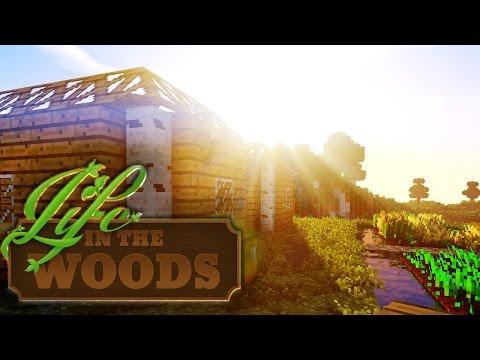 LIFE IN THE WOODS ⛺️ 21 • Immer feste druff!