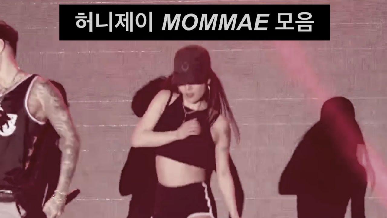[허니제이 몸매 MOMMAE 모음] 허니제이의 독보적인 느낌