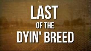 Lynyrd Skynyrd // Last of a Dyin