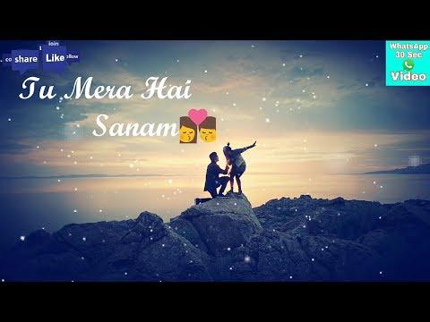 Tu Mera Hai Sanam Whatsapp Status