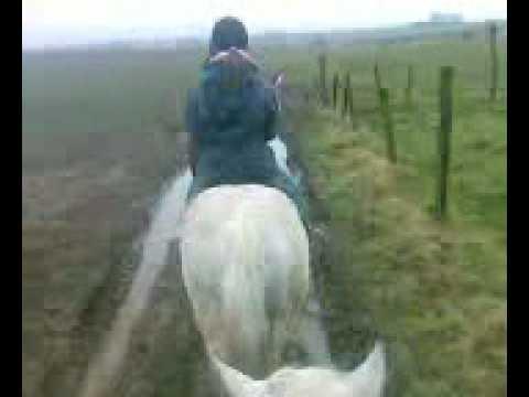 balade a cheval avc amandine