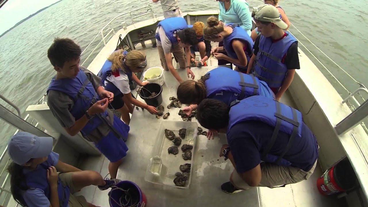 Student Leadership Summer Courses Chesapeake Bay Foundation