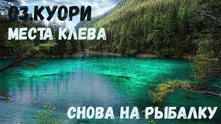 Російська Рибалка 4 : Рибалка на оз.Куори I Перший раз на локації I Місця кльову l Стрім