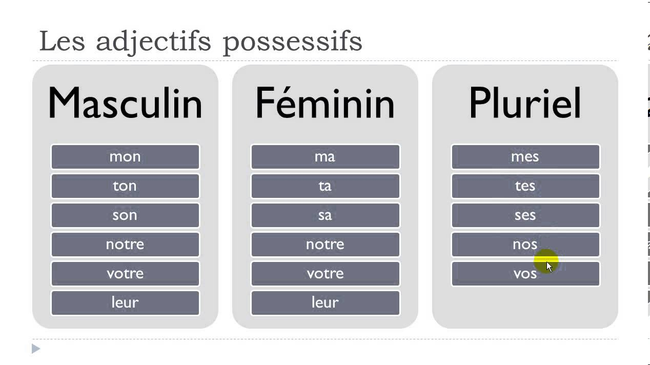 French Possessive Adjectives - YouTube