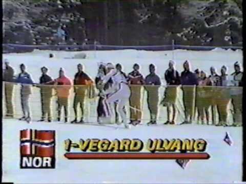 1987 FIS World Nordic Ski Championships