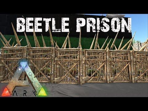 ARK Survival Evolved - Beetle Prisons and Platform Quetzal Tames! E12