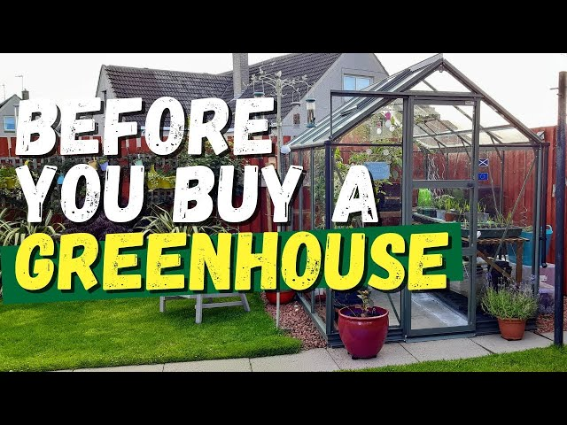 Before you buy a greenhouse