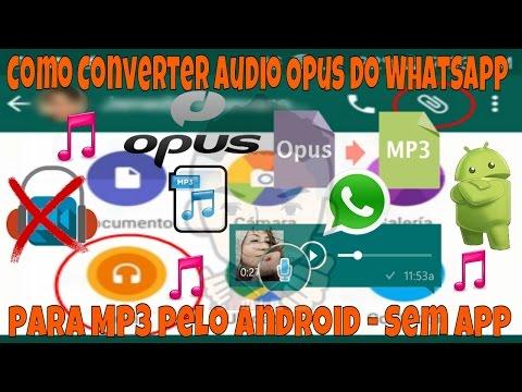 Como Converter Áudio Opus do Whatsapp para MP3 pelo Android - Sem App