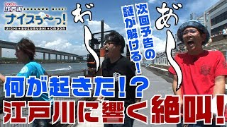 ういちの江戸川ナイスぅ~! 【出演者・ういち/鈴虫君/オモダミンC】 ...
