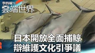日本開放全面捕鯨 辯維護文化引爭議 - 李四端的雲端世界
