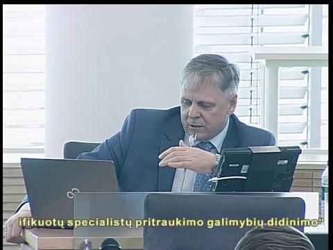 2019-03-28 Seimo vakarinis posėdis Nr. 273