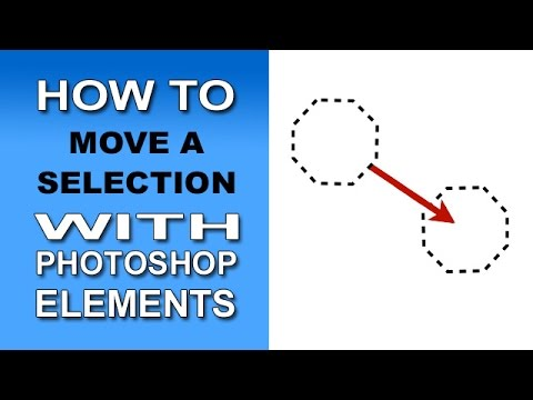 Move A Selection In Photoshop Elements