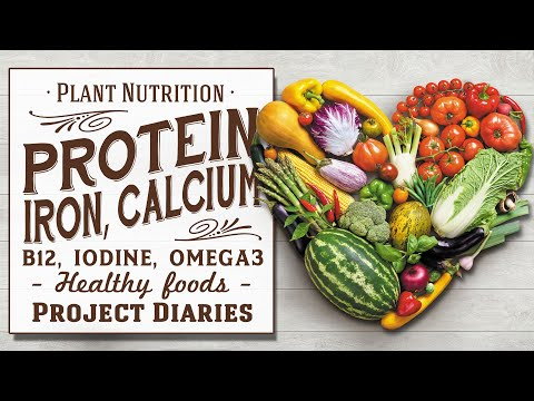 ★How To Get Protein, B12, Calcium, Iron, Vitamin D & More On A Whole Food Plant Based Diet (6 Weeks)