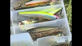 Рыбак Рыбаку 449