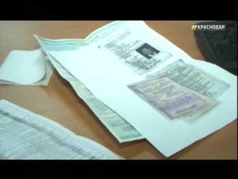 видео: На Кубани раскрыли схему мошенничества с ОСАГО