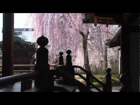 Kodaiji Zen Temple, Kyoto (Official Movie)