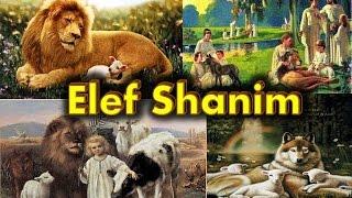 Elef Shanim (El Milenio)