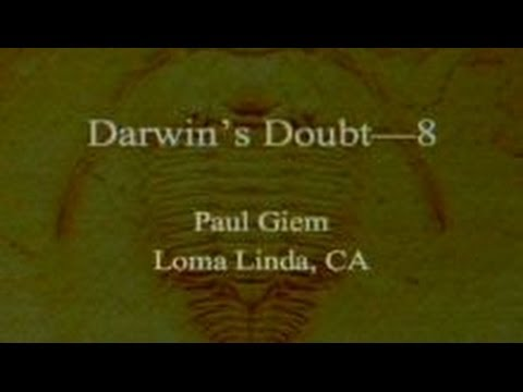 Darwin's Doubt (Part 8) 11-16-2013 by Paul Giem