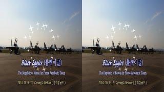 ( 3D 영상 ) ROKAF Black Eagles A…