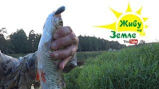 Китайский ВОБЛЕР сделал рыбалку! Щука, голавль, жерех! РЫБАЛКА на СПИННИНГ летом