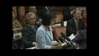 平成24年4月5日 参議院予算委員会.