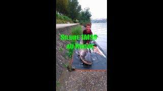 Video silure 1M99 download MP3, 3GP, MP4, WEBM, AVI, FLV November 2017