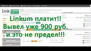 Выплаты с сайта Linkum, заработано уже более 1200 руб.