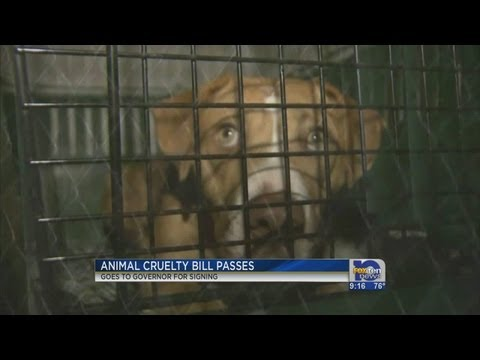 Animal cruelty bill to be signed into law