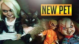 Trick R Treat Sam Gets a REAL Pet Cat!! Bride of Chucky!