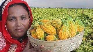 Bengali Karela Vorta Recipe Easy & Tasty Cooking Farm Fresh Bitter Melon Paste Curry Village Food