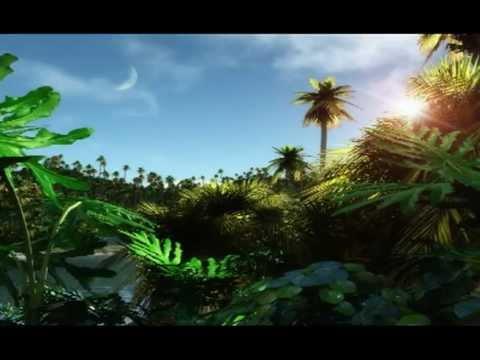 ViSible Sound : The Tribute : Back And Forth Volume 2 [Dubstep J-Tek Future Jungle] Track 08
